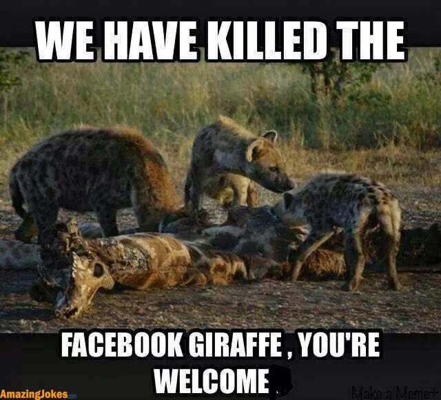 Dead giraffe jokes - photo#2