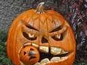 halloween pumpking eating another