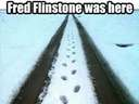 Fred Flintstone was here #snow #tracks