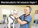 Why is it called a vet #doctor #dog