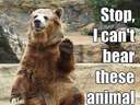 Stop, I cant bear these animal jokes