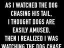 as I watched the dog chase his tail