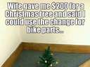 My wife gave me 200 dollars for a Christmas tree