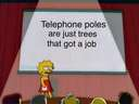 Telephone poles are trees with a job